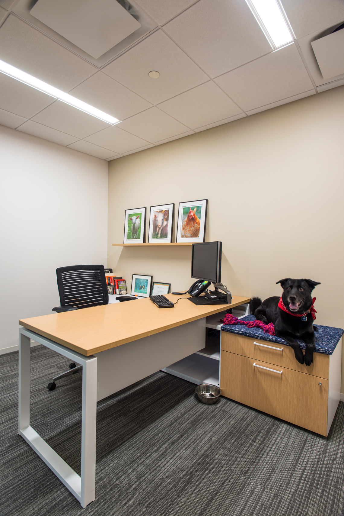 Making the Workspace Personal Kimball
